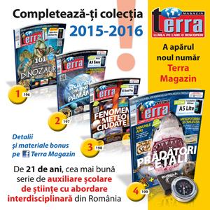 Terra Magazin 199