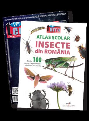 Pachet I - Atlas Insecte din Romania + Revista Terra Magazin