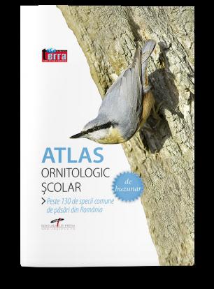 Atlas ornitologic de buzunar